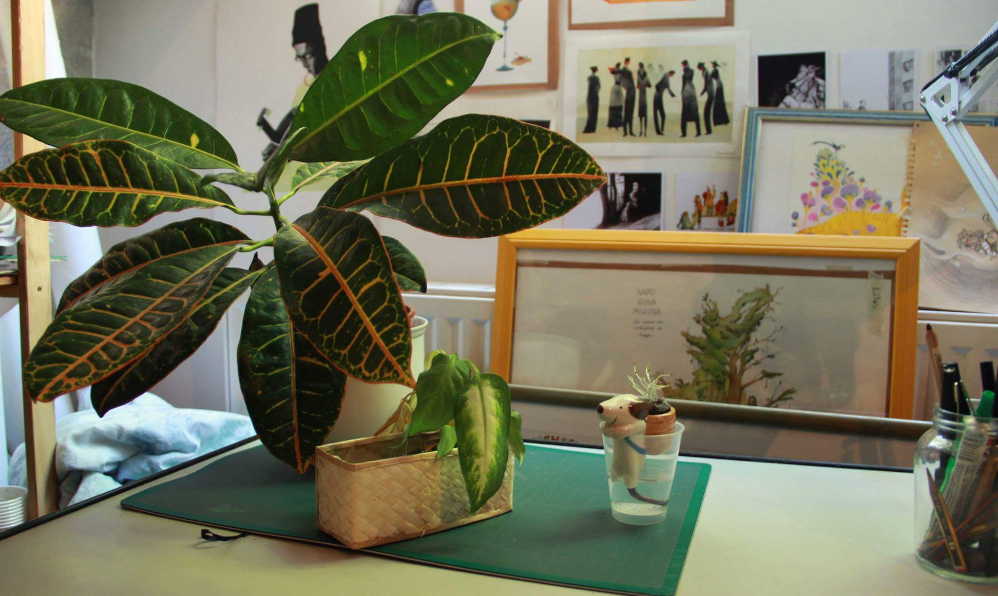 atelier-Millefeuille-plante